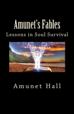 lessons in soul survival BookCoverImage
